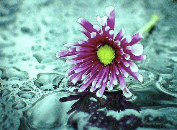 Digital Art - Digital Daisy And Drops by Keith Smith