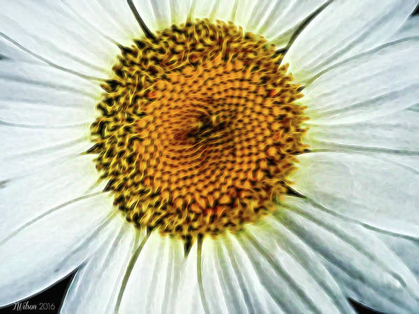 Photograph - Digital Daisy by Teresa Wilson