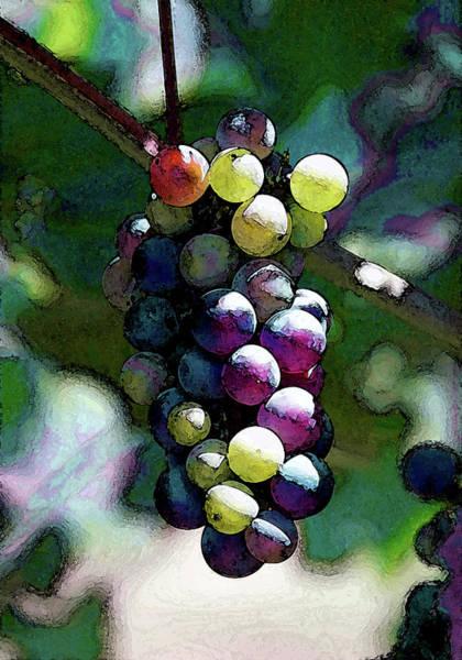 Photograph - Digital Painting River Ridge Winery 2681 Dp_2 by Steven Ward