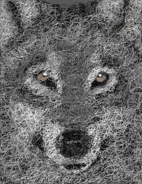 Wall Art - Digital Art - Digital Scribble - Wolf by Nathan Shegrud