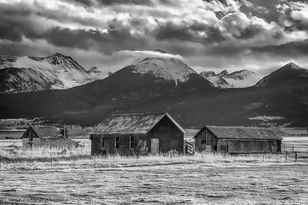 Westcliffe Photograph - Dignity by Eric Glaser