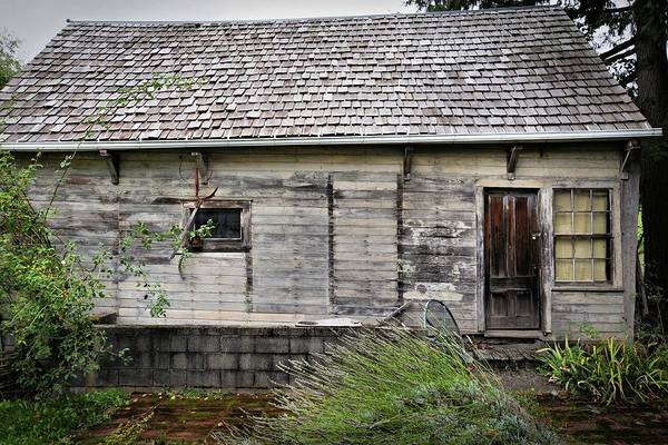 Photograph - Dilapidated by Patricia Strand
