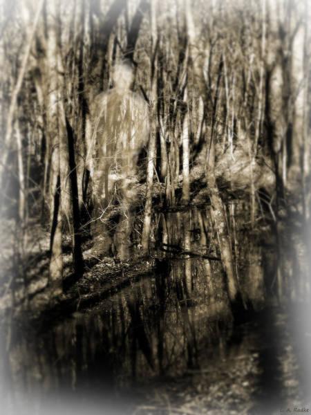Photograph - Dimensions by Lauren Radke