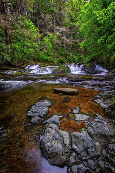 Delaware State Park Wall Art - Photograph - Dingmans Creek by Rick Berk