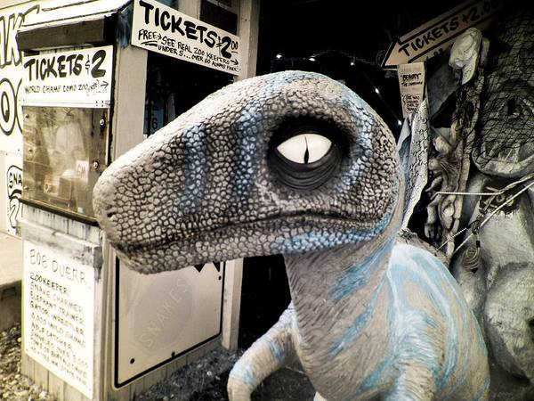 Photograph - Dino Greeter by Scott Lacey