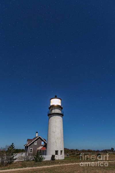 Photograph - Dippers At Highland Lighthouse by Richard Sandford