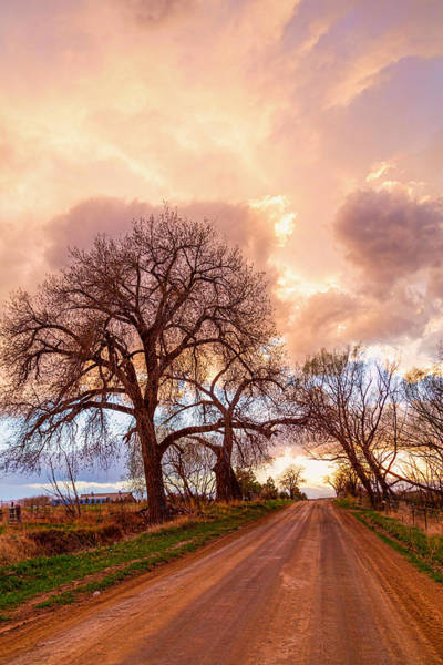 Photograph - Dirt Road Cloud Cruising  by James BO Insogna
