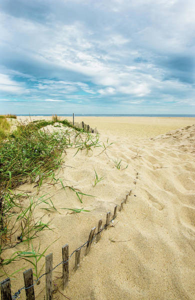 Photograph - Disappearing Dune Fence At Sandy Hook by Gary Slawsky