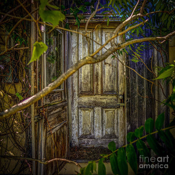Photograph - Disappointed Door by Roger Monahan