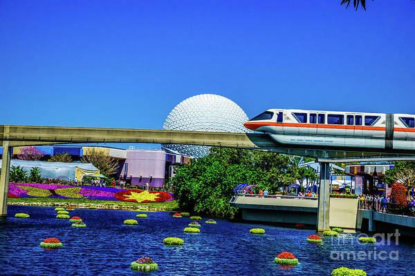 Photograph - Florida by Buddy Morrison