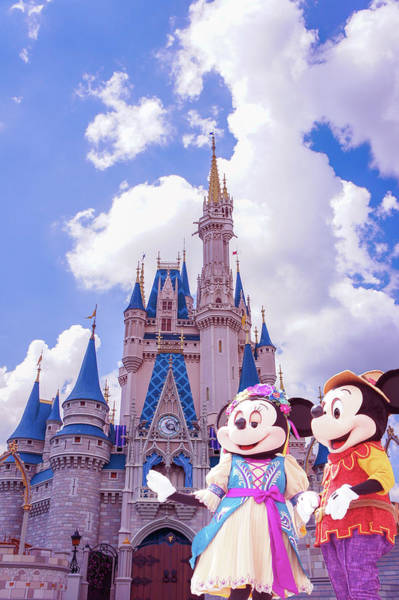Disney World Photograph - Disney World by Art Spectrum