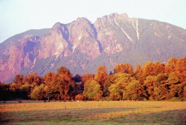 Distant Cattle Grazing Beneath Cascade Mountains 1 Art Print