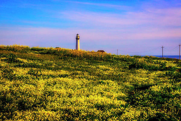 Wall Art - Photograph - Distant Lighthouse by Garry Gay