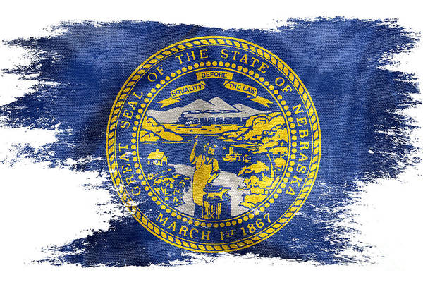 Nebraska Photograph - Distressed Nebraska Flag  by Jon Neidert