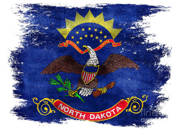 North Dakota Photograph - Distressed North Dakota Flag by Jon Neidert