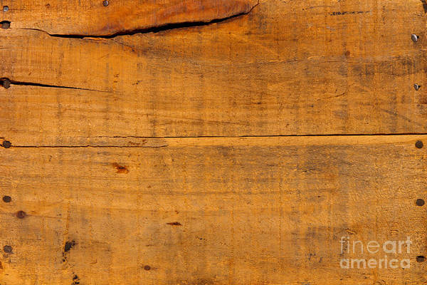 Wood Siding Wall Art - Photograph - Distressed Wood Planks by Olivier Le Queinec
