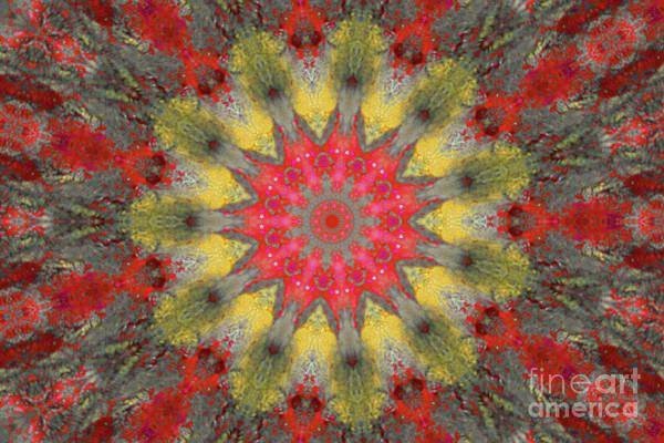 Digital Art - Disturbed Water Kaleidoscope by Donna L Munro