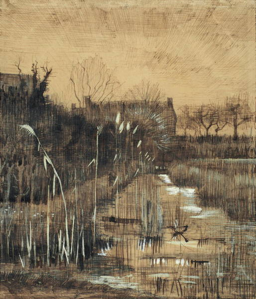 Ditch Painting - Ditch, 1884 by Vincent Van Gogh