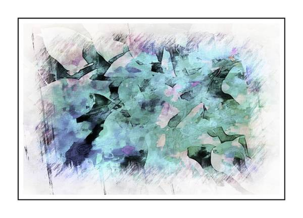 Wall Art - Photograph - Divergent by Ches Black