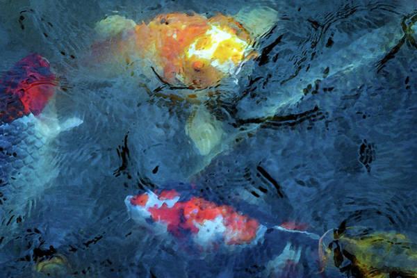 Photograph - Diversity 4841 Dp_2 by Steven Ward