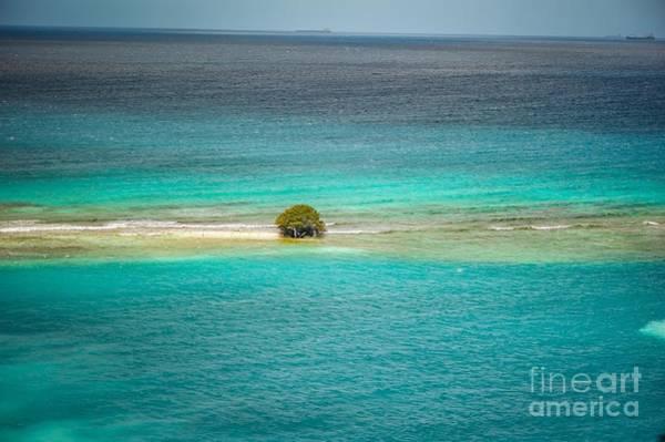 Photograph - Aruba by Buddy Morrison