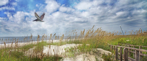 Wall Art - Photograph - Divine Beach Day Special Crop by Betsy Knapp