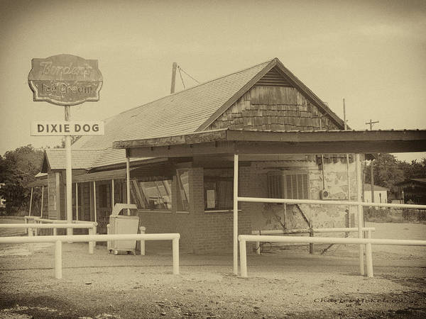 Photograph - Dixie Dog Bnw by Charles McKelroy