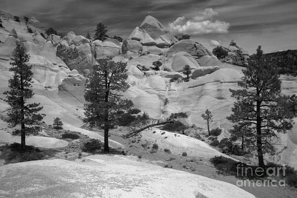 Photograph - Dixie Tent Rocks Black And White by Adam Jewell