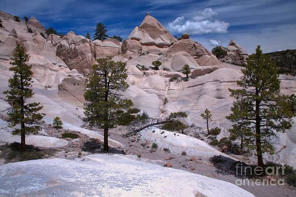 Photograph - Dixie White Tent Rocks by Adam Jewell