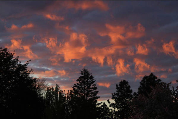 Photograph - Dm5771 Sunrise On Clouds by Ed Cooper Photography