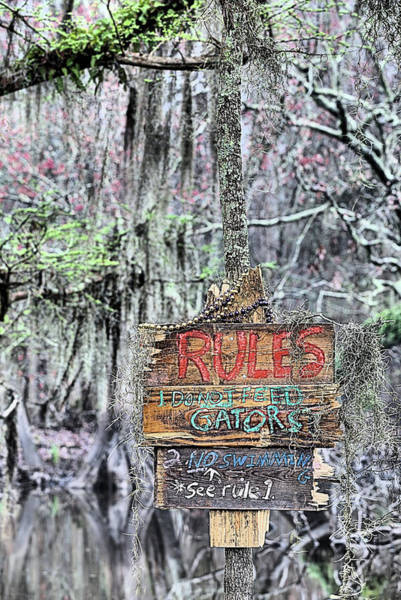 Photograph - Do Not Feed Gators by JC Findley
