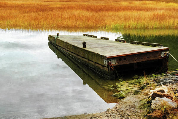 Photograph - Dock And Marsh by Tom Singleton