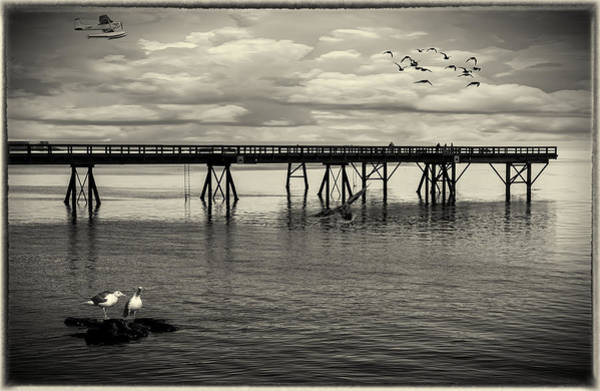 Photograph - Dock On The Sea by Barry Weiss