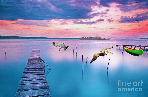 Brown Pelicans Wall Art - Photograph - Docks And Pelicans by Laura D Young