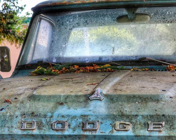 Photograph - Las Tunitas Dodge by Gia Marie Houck