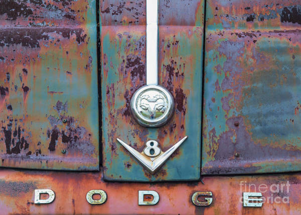Photograph - Dodge II by Terry Rowe
