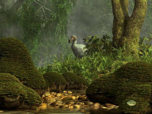 Digital Art - Dodo Creek by Daniel Eskridge