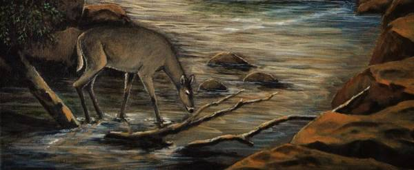 Black Buck Painting - Doe Creek by Kimberly Benedict
