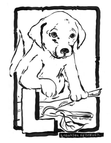 Wall Art - Painting - Dog Drawing Labrador by Kim Guthrie