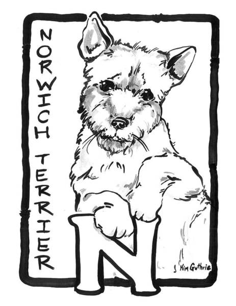 Wall Art - Painting - Dog Drawing Norwich Terrier And Black And White Letter N by Kim Guthrie