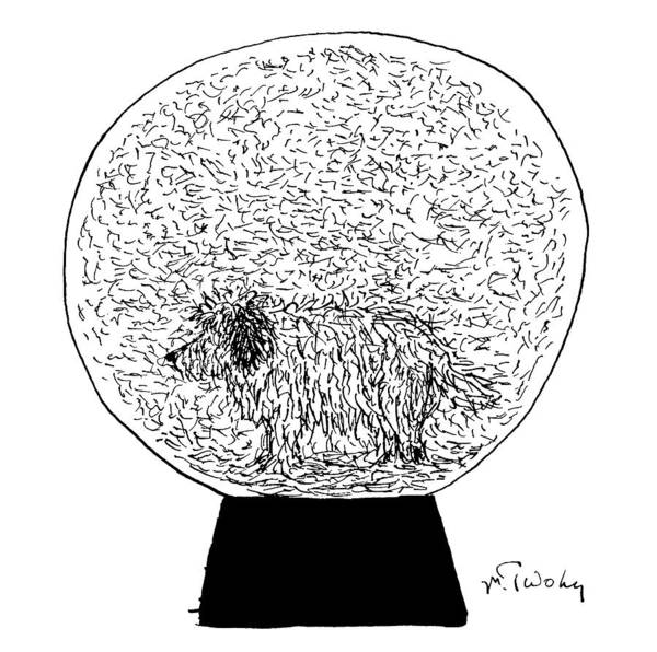 Hair Drawing - Dog Globe by Mike Twohy