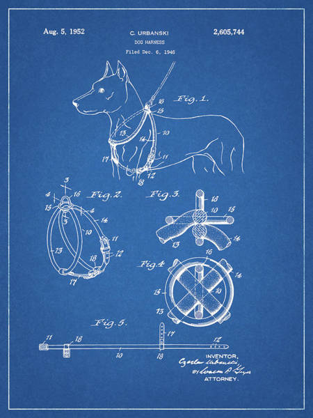 Wall Art - Drawing - Dog Leash Patent by Dan Sproul