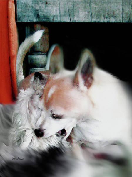 Digital Art - Dog Love Art 3 by Miss Pet Sitter