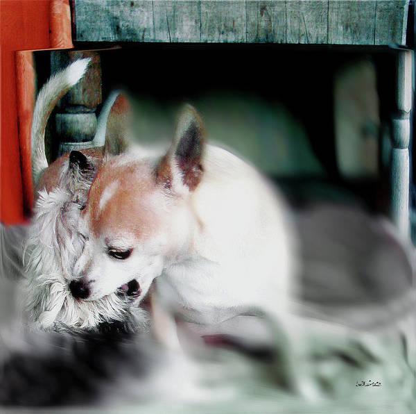 Digital Art - Dog Love Art 4 by Miss Pet Sitter