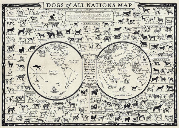 Dog Lover Photograph - Dog Lovers Map 1936 by Daniel Hagerman