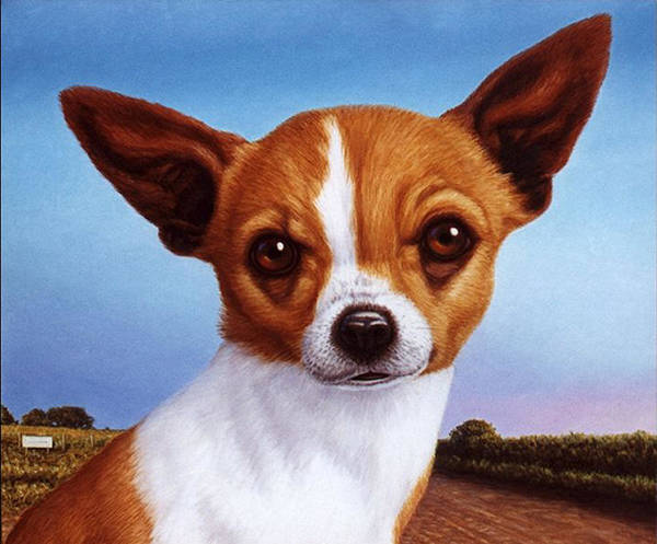 Chihuahua Painting - Dog-nature 3 by James W Johnson
