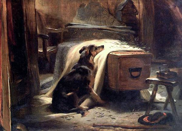 Siberian Husky Mixed Media - Dog Old Shepherds Chief Mourner by Edwin Landseer