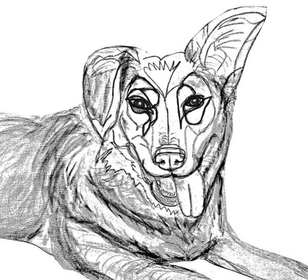 Digital Art - Dog Sketch In Charcoal 1 by Ania Milo