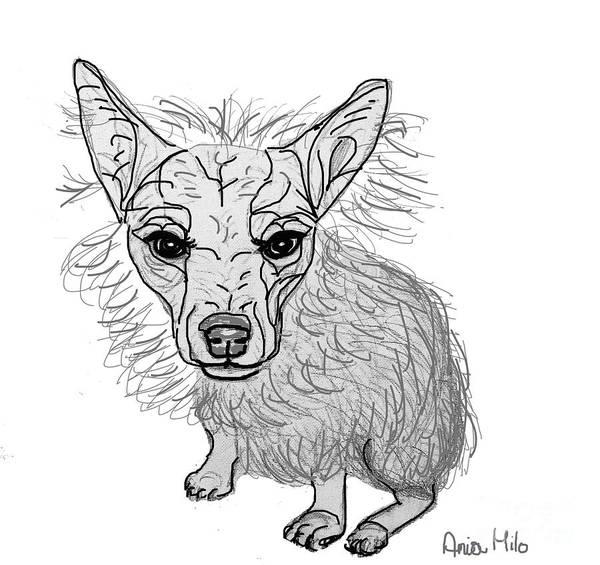 Digital Art - Dog Sketch In Charcoal 3 by Ania M Milo
