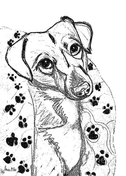 Digital Art - Dog Sketch In Charcoal 4 by Ania M Milo